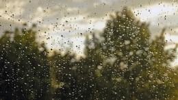 Видео: Петербург накрыл шторм— город почти невидно застеной дождя