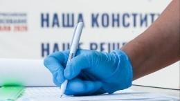 Творческий подход: неожиданные образы избирателей наголосовании поКонституции