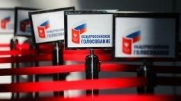Памфилова назвала голосование попоправкам кКонституции легитимным