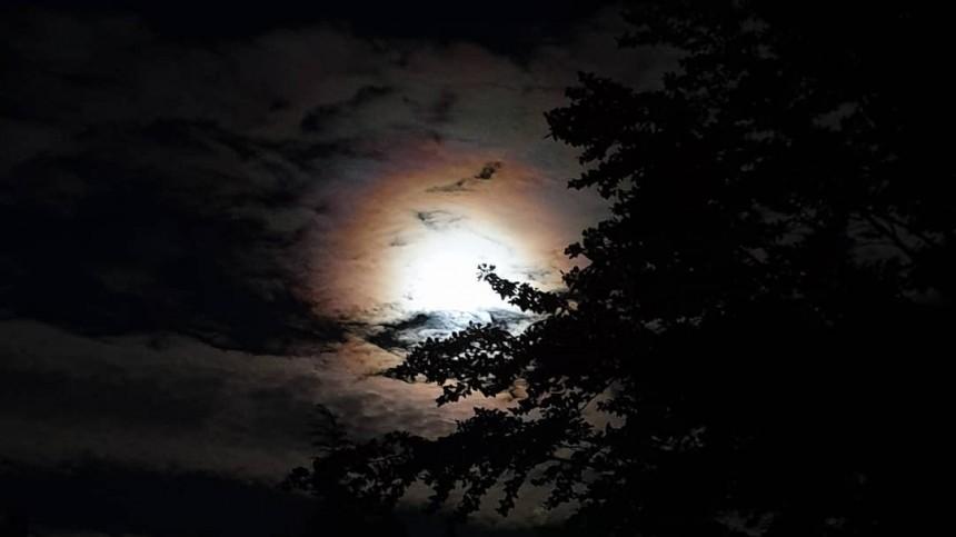 Первые кадры завораживающего лунного затмения публикуют всети жители Земли