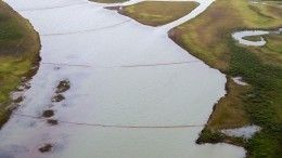 Росприроднадзор назвал сумму ущерба экологии отразлива топлива вНорильске