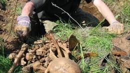 Вворонке отупавшего снаряда нашли останки советских солдат— видео