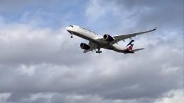 ВАТОР назвали примерный месяц возобновления международных перелетов