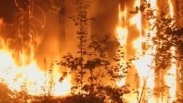 Повсюду тлеют пожары: как вВолгоградской области борются согненной стихией
