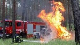 Ветер раздувает пламя: вВолгоградской области продолжается борьба сприродными пожарами