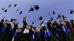 Выпускников трудоустроят засчет государства