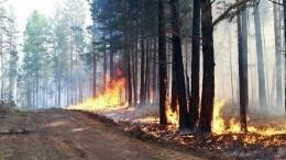 Лесные пожары вЯкутии угрожают спалить несколько поселков— огненное видео