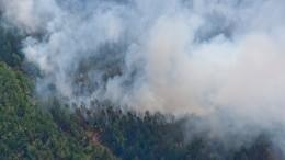 Перевал Дятлова самозажегся— фото
