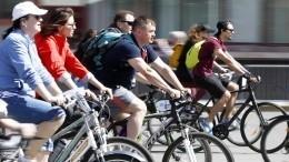 Выйдя изсамоизоляции, россияне бросились скупать велосипеды