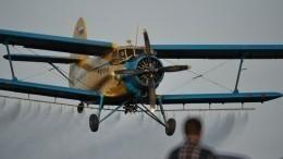 Самолет Ан-2 упал вНижегородской области