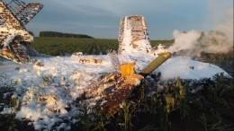 Видео: Один человек погиб врезультате падения самолета Ан-2 под Нижним Новгородом
