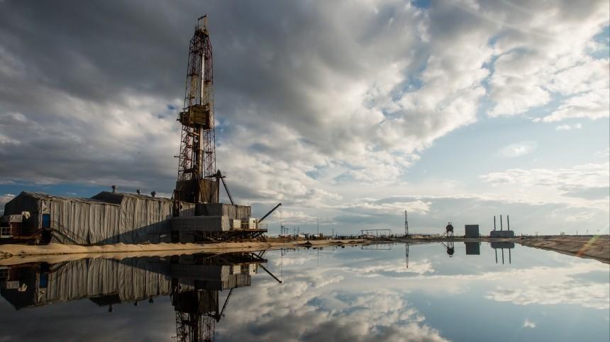 Мировые цены нанефть упали вожидании заседания ОПЕК+