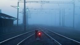 Видео: десятки человек пострадали при столкновении поездов вЧехии