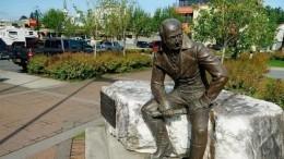 «Это сумасшествие»: автор памятника Баранову высказалась опроисходящем