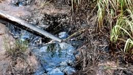 Сахалин оказался награни экологической катастрофы из-за падения бензовоза вреку