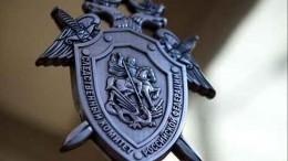 Начальник ИКвКалмыкии задержан поподозрению впособничестве руководству террористическим сообществом