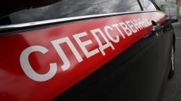 СКРФвозбудил уголовное дело после убийства сестры экс-директора «Ростсельмаша»