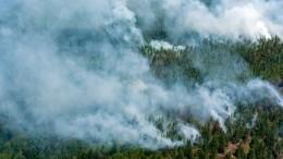 Мишустин поручил кабмину контролировать ситуацию слесными пожарами