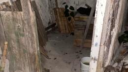 Жена задушила мужа, скинула ввыгребную яму изалила еебетоном— фото