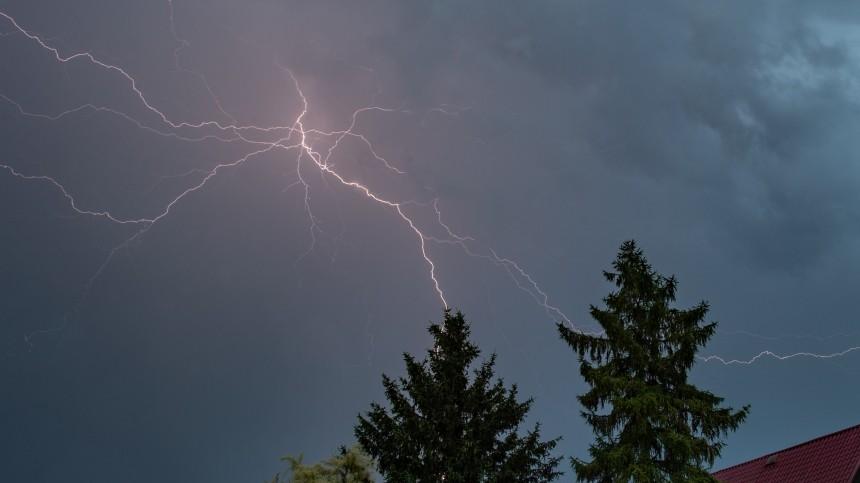Врачи «запустили» сердца мужчин, вкоторых ударила молния вмосковском парке