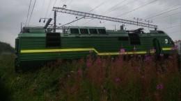 ВМЧС сообщили подробности ЧПсосходом срельсов поездов наюге Петербурга