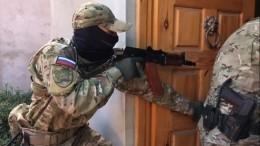 Задержанные вПетербурге сторонники ИГ* планировали убийства силовиков— видео