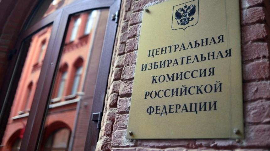 ЦИК планирует провести онлайн-голосование надопвыбрах вГосдуму вКурской иЯрославской областях