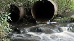 Вопросы окружающей среды обсудили профильные министры стран БРИКС