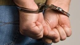Песков: 33 задержанных вБелоруссии россиянина— сотрудники ЧОП