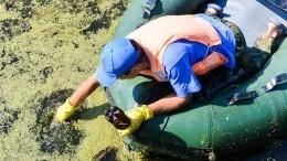 Как спасти город вЧелябинской области отядовитой реки цвета хурмы?