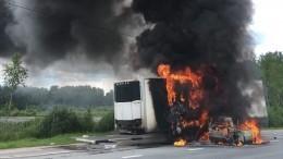 Легковушка влетела вфуру натрассе под Петербургом ивспыхнула— огненное видео