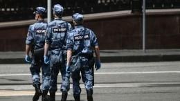 Пофакту драки сросгвардейцами встоличном парке Горького возбуждено уголовное дело