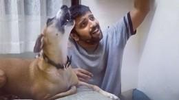 «Золотой голос»: Видео споющей собакой покорило соцсети