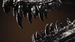 Останки динозавров нашли вКемеровской области— видео