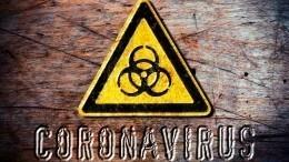 Вирусолог назвал сроки второй волны коронавируса вРоссии