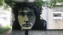 ОтМоны Лизы доЦоя: уличный художник превратил поселок вЛенобласти вмузей стрит-арта