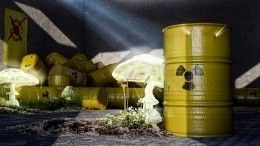 Украинский журналист предложил атаковать Россию ядерными отходами