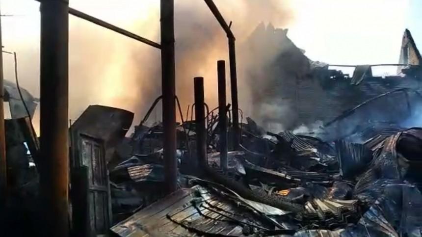 Названа причина, покоторой выгорело пол-улицы вСамаре— видео