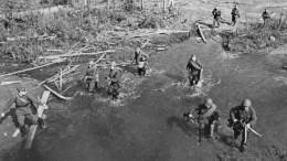 День грусти искорби: ВПетербурге вспомнили павших защитников Ленинграда