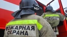 Два ребенка идвое взрослых погибли встрашном пожаре вТверской области