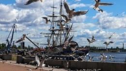 Какие тайны всебе хранит «Остров фортов» вКронштадте?