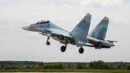 Минобороны планирует купить 46 самолетов Су-30СМ2 иЯк-130