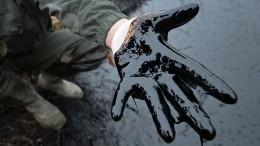 Видео ликвидация последствий разлива нефти уМаврикия