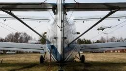 Самолет Ан-2 совершил аварийную посадку вподсолнечном поле под Уфой