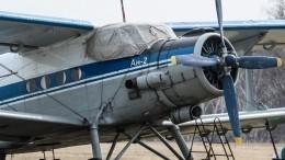 Озвучена вероятная причина аварийной посадки Ан-2 вподсолнечном поле под Уфой