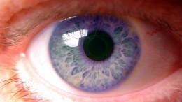 Цветоаномалия. Как узнать, что видишь мир иначе, чем другие?