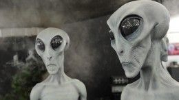 Илон Маск причастен? Ученый объяснил происхождение пяти НЛО, заснятых сМКС