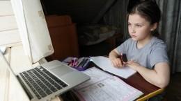 Вкомитете пообразованию Петербурга неисключают перехода на«дистанционку»