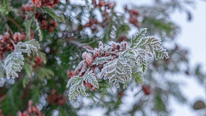 Осень близко: когда придут первые морозы врегионы России