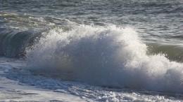 Верхом нарадуге: девочку нанадувном единороге унесло воткрытое море